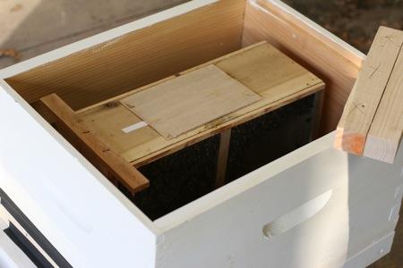 installing-bee-package-3