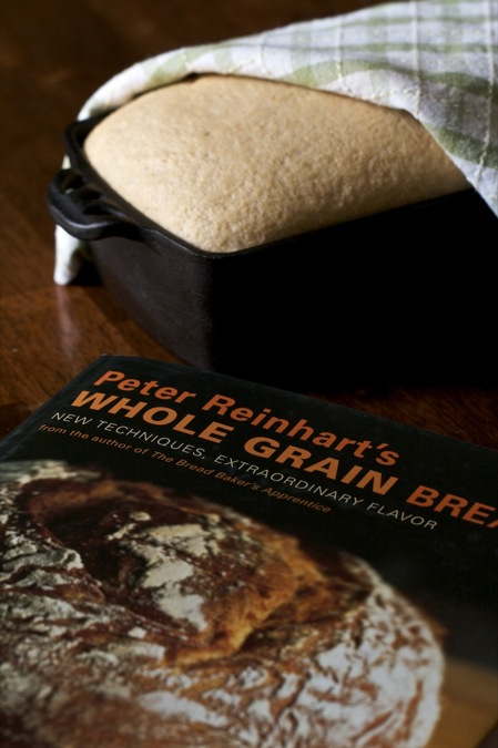 Baking 100% whole grain bread from Peter Reinhart's Whoel Grain Bread Cookbook.