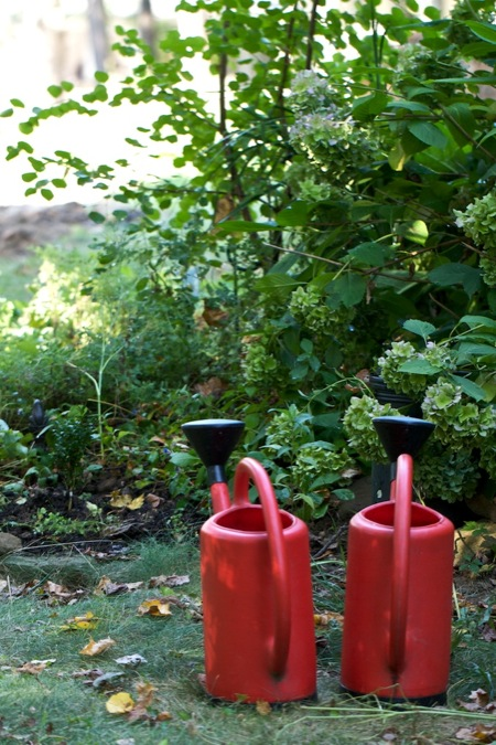 two_red_watering_cans