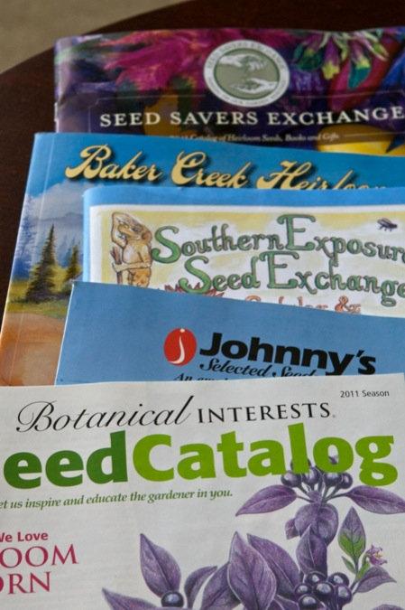 Heirloom Seed Companies Chiots Run