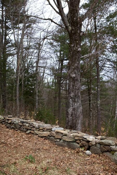rock walls 1