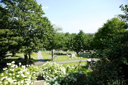 Augsta Gardens 5