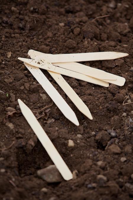 garlic combo Giveaway 2