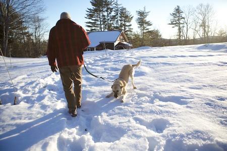 Tara in Snow 9