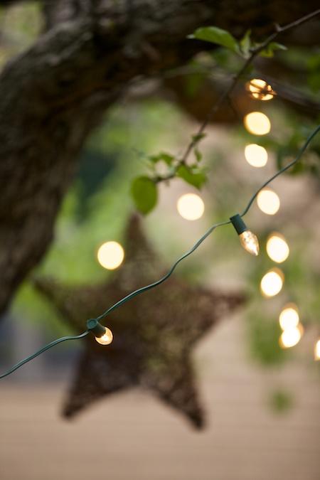 stars in tree 3