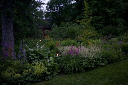 mclaughlin garden illuminated 4