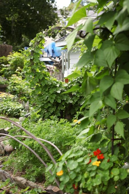 last garden in tour 2