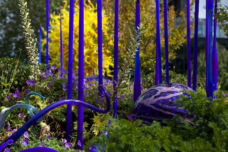Chihuly Glass Exhibit Seattle (5)
