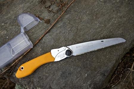 pruning saw 2
