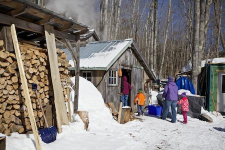 Maine Maple Sunday 2