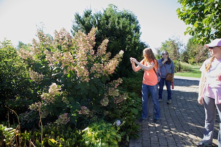 OARDC arboretum 2