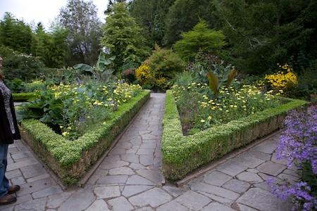 Heronswood formal garden 1
