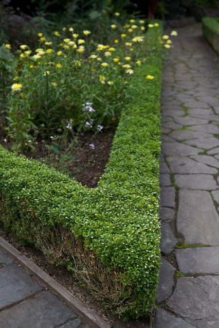 Heronswood formal garden 2