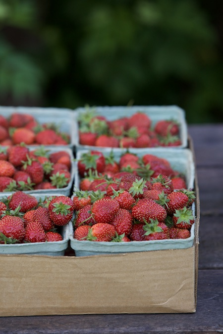 homegrown strawberries 2