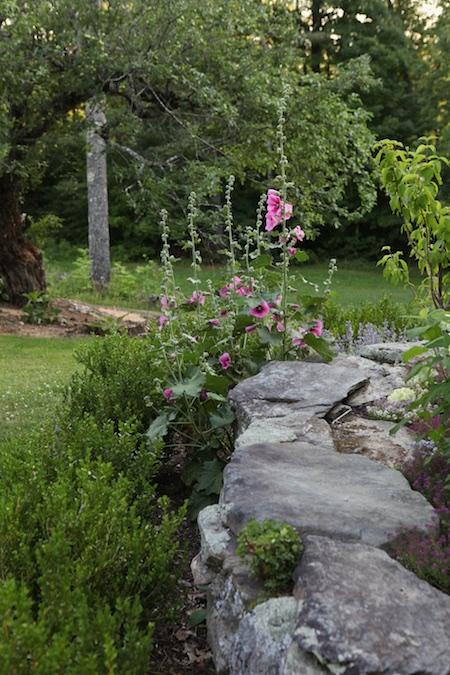 front foundation garden 2