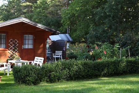 swedish-community-garden-day-4-5