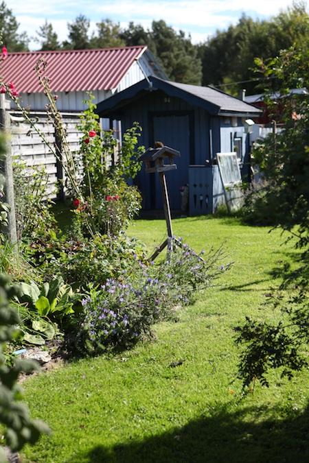 swedish_community_garden-5