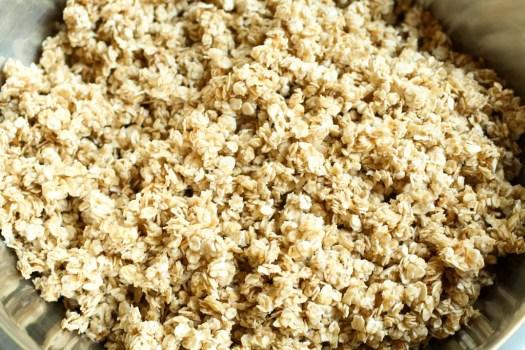 granola sin cocinar en un bol