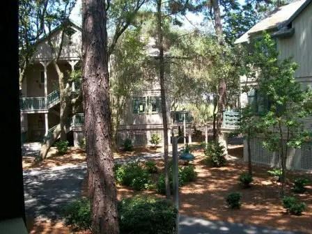A Magical Vacation at Disney's Hilton Head Resort