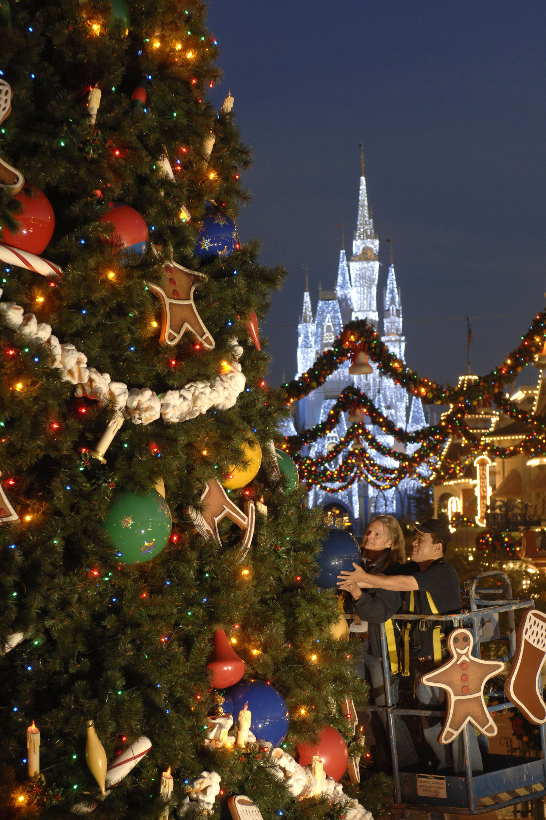 Yuletide Fantasy Tour At Walt Disney World