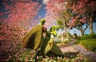 2014 Epcot International Flower & Garden Festival
