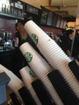 DTD Starbucks Cups
