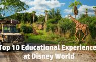 Top 10: Educational Experiences at Disney World