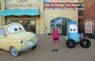 A First Timer's Guide:  The Top 15 Things You Need to Know About Disney World