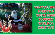 What You Need To Know If You're Going to Disney World for Christmas