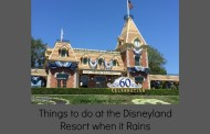 Things to do at the Disneyland Resort when it Rains