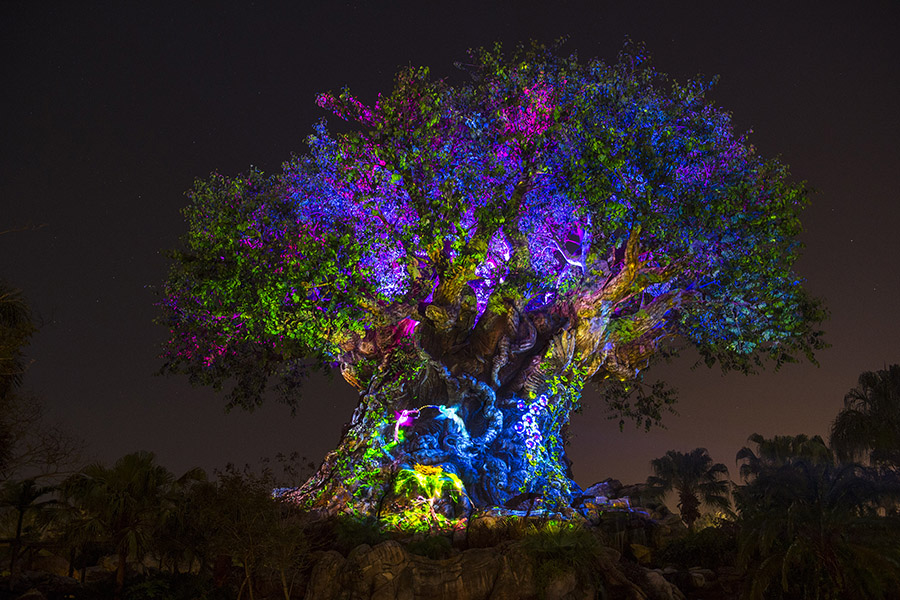Disney's Animal Kingdom to Offer Evening Hours and Jungle Book Show Starting Memorial Day