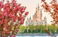 New Etiquette Guide Announced for Shanghai Disneyland Visitors