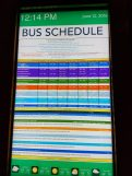 Shades of Green Bus Schedule