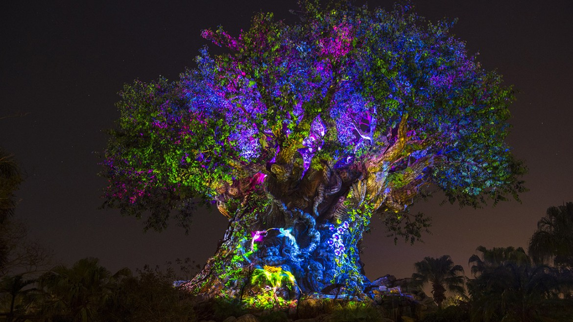 Disney's Animal Kingdom to Scale Back Late-Night Hours