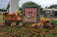 Mickey's Not So Scary Halloween Party Review From Opening Night