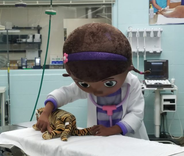 Be Sure To Make Your Way Over To The Exam Room When Doc Mcstuffins Takes Her Break As She Exits The Main Room She Will Make Her Way Back To Check On
