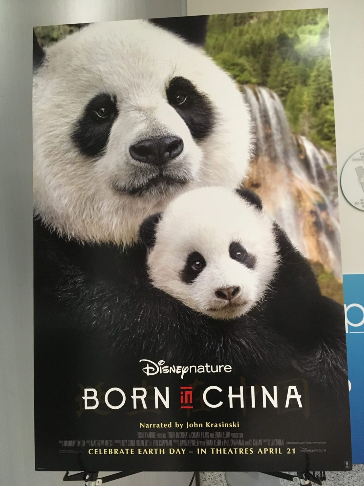 """""""Born In China"""" Documentary Review"""
