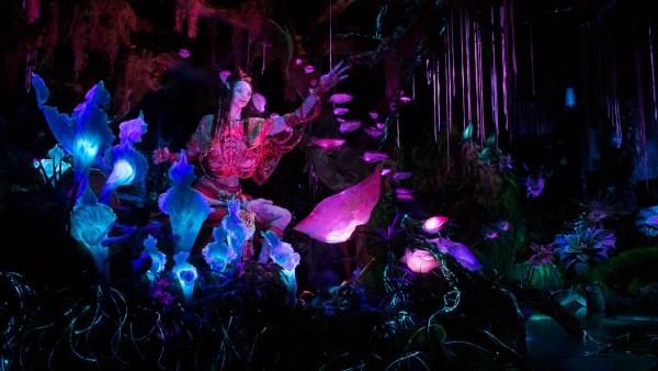 Na'vi language creator visits Pandora World of Avatar