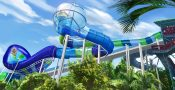 Water Slide Ray Rush