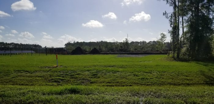 Work Underway On New Solar Farm Near Animal Kingdom At