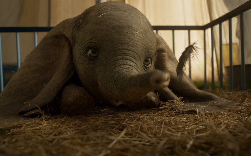 Dumbo's Opening Weekend Box Office Numbers