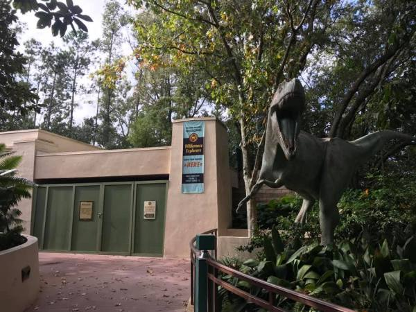 Explore Animal Kingdom in a Whole New Way