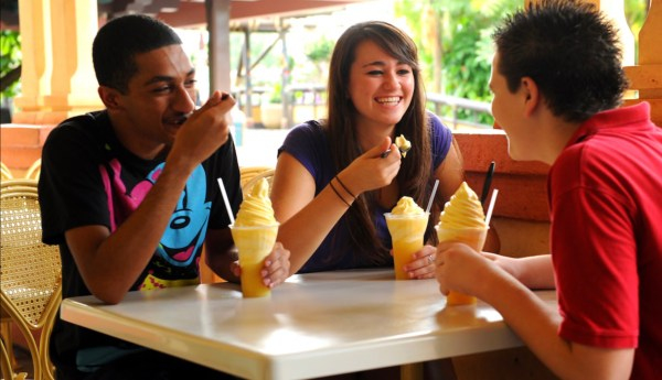 New Magic Kingdom Park VIP Food Tours Now Being Offered 1