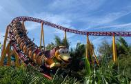 Slinky Dog Has Lost His Tail!