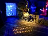 Discover the Fun of Sea Life Orlando Aquarium