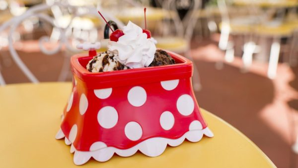 Minnie Kitchen Sink