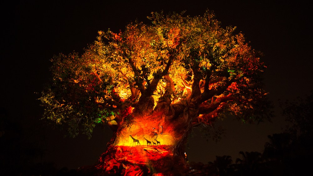 Lion King Sequence to Be Added to Tree of Life Awakenings at Animal Kingdom
