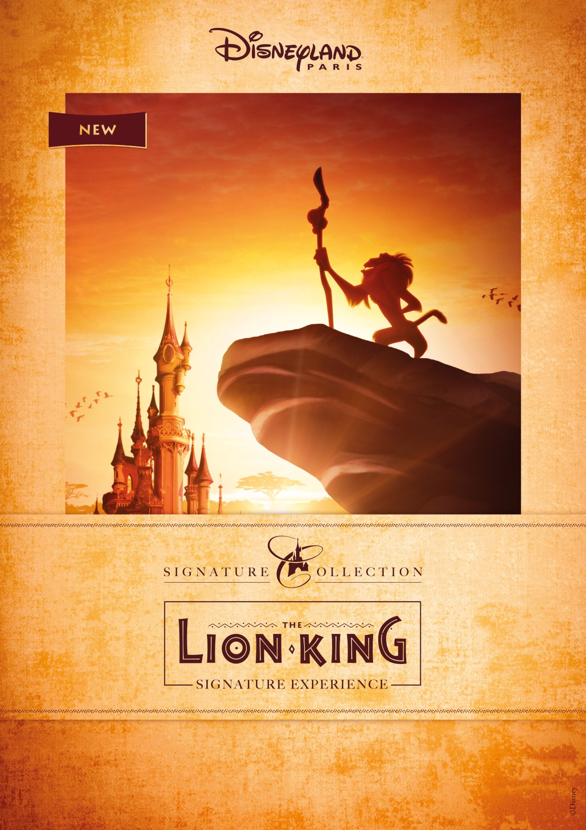 Lion King Signature Experience Roaring into Disneyland Paris!