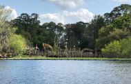 River Country Is Being Demolished To Make Way For New DVC Property