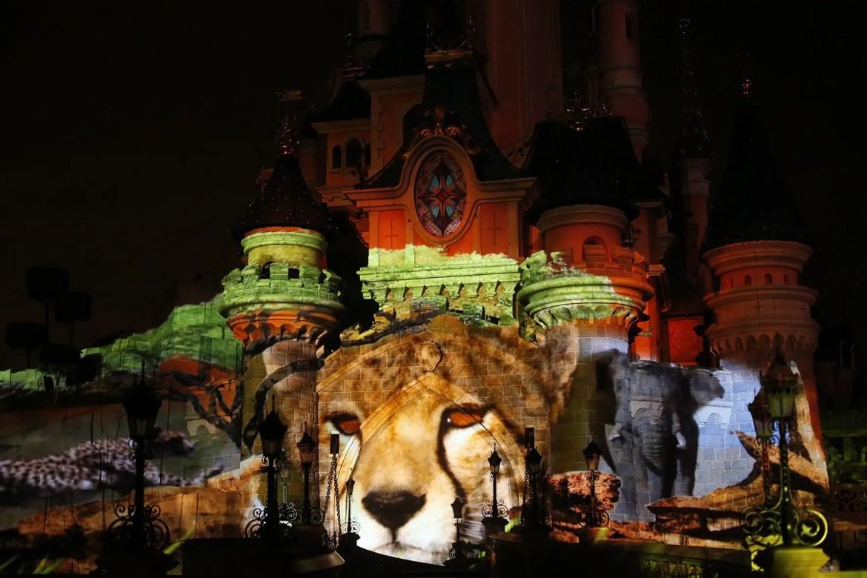 Disneynature Coming to Disneyland Paris!